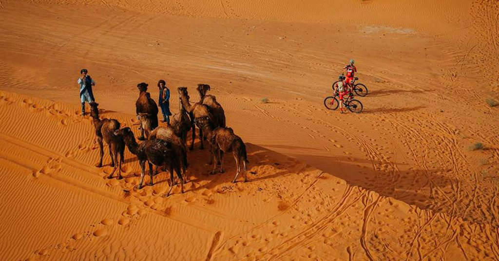 Morocco's desert will be the scene of the race.