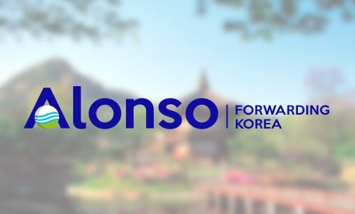 Alonso Forwarding Korea